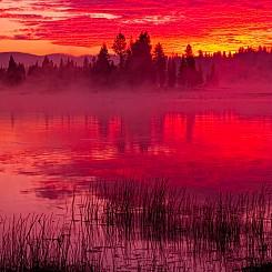 001 Sunrise at Fishing Bridge 1 Yellowstone NP