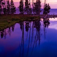 003 Sedge Creek Yellowstone NP