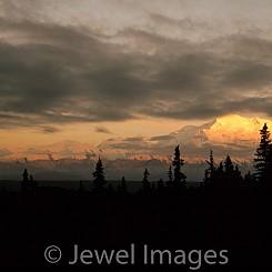 005 Mountain Golden Glow Mt.McKinley NP
