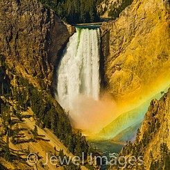 008 Rainbow at Lower Falls Yellowstone NP