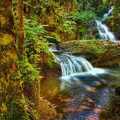 033 Onomea Falls L054
