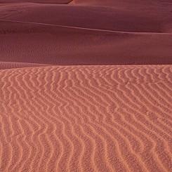 050 Dune Ripples Nipomo Dunes CA