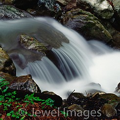 061 Turtle Rock Limekiln NP CA