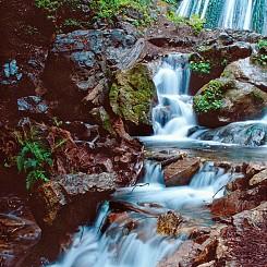 066 Glimpses of Jewels Limekiln State Park CA