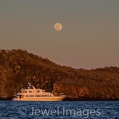 072 Gardner Bay Espanola Island 2142