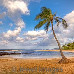 074 Poipu Beach L024