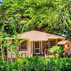 081 Plantation Cottage III L067