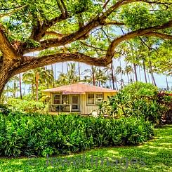 082 Plantation Cottage IV L068
