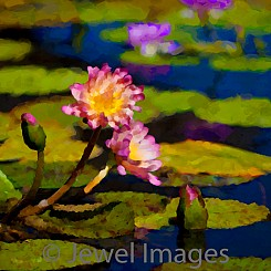 059 Water Lily Series II (painted) V004