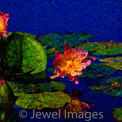 060 Water Lily Series III (painted) V006
